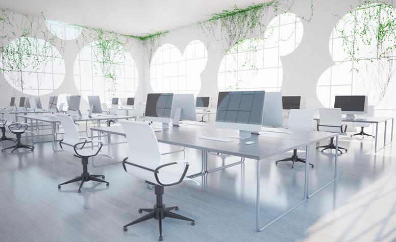 オフィスデザインはナチュラルがトレンド!生産性につながるリラックス効果も